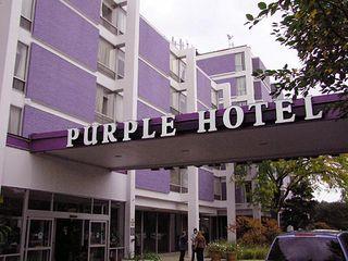 Purplehotel